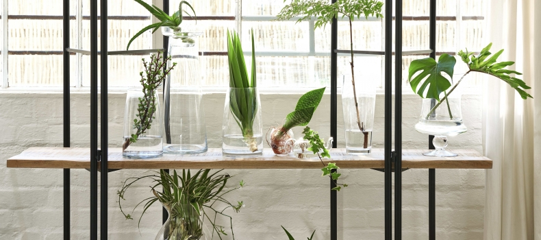 5 TIPS FOR AN ECO-FRIENDLY HOME MAKEOVER
